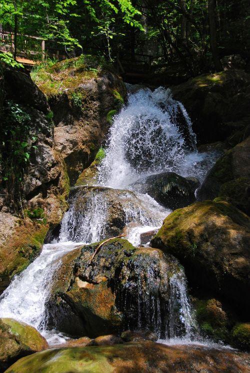 waterfall myra cases lower austria