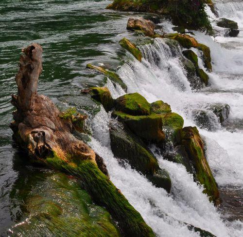 waterfall rhine falls rhine