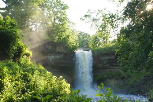 waterfall trees cascading