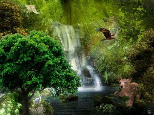 waterfall water rio