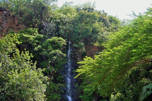 Waterfall At Umgeni Birdpark