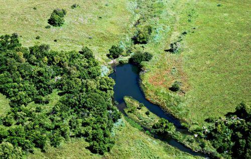 Waterhole In Countryside