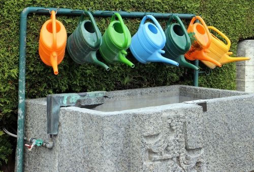 watering can casting water