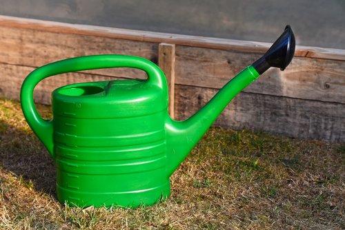 watering can  garden  gardening