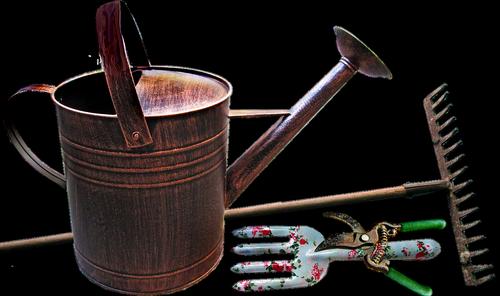 watering can  garden  equipment