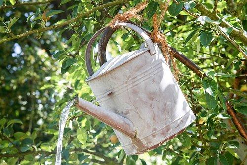 watering can  metal  water