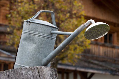 watering can  water  shower