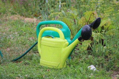 watering can  garden  summer
