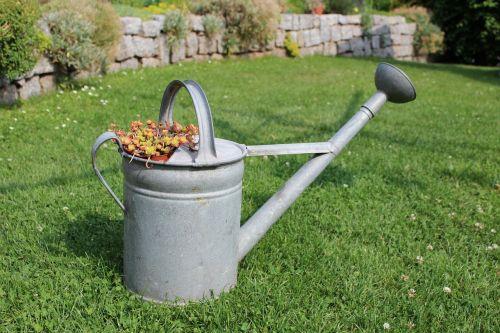 watering can garden rush