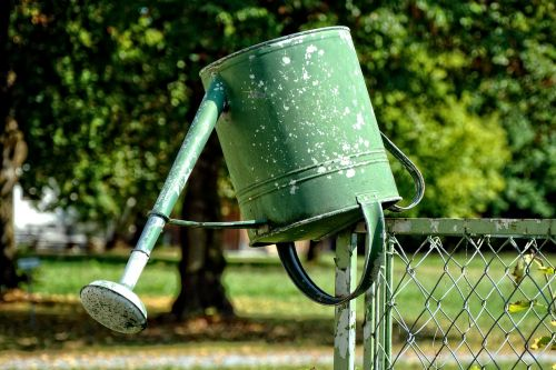 watering can garden casting