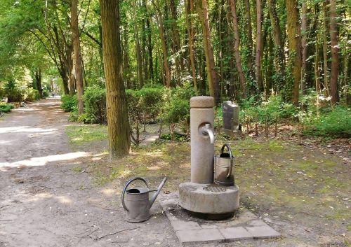 watering hole gies jugs park