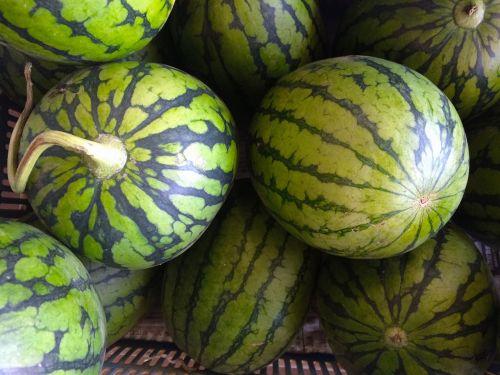 watermelon green miurakaigan