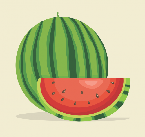 watermelon sliced ​​watermelon cut watermelon
