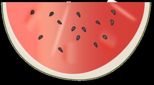 watermelon disc delicious