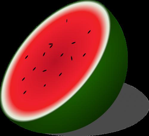 watermelon melon half