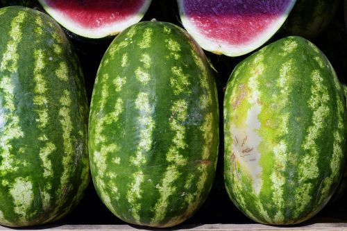 watermelon choose fruit