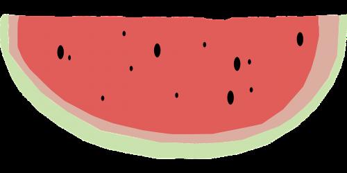 watermelon quarter fruit