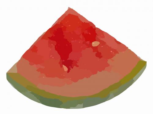 watermelon melon slice