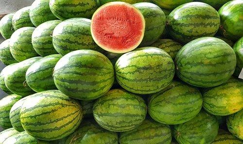 watermelon  melon  red