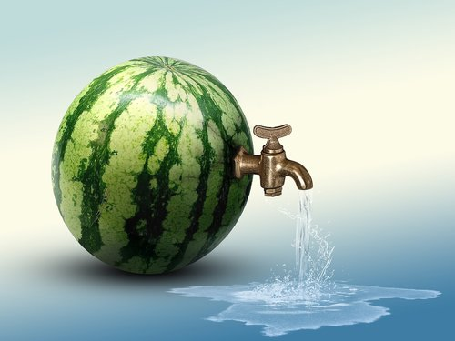 watermelon  water  hydration
