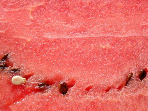 watermelon pulp melon