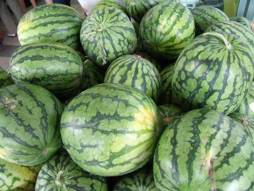watermelons pile fresh