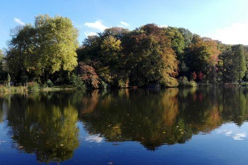 vandenys, gamta, medis, ežeras, atspindys, romberg parkas, Dortmundas, kraštovaizdis, be honoraro mokesčio