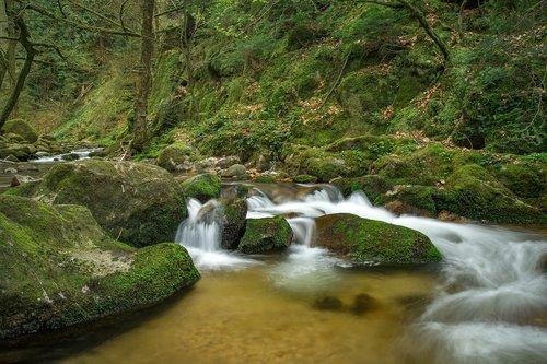 waters  waterfall  nature