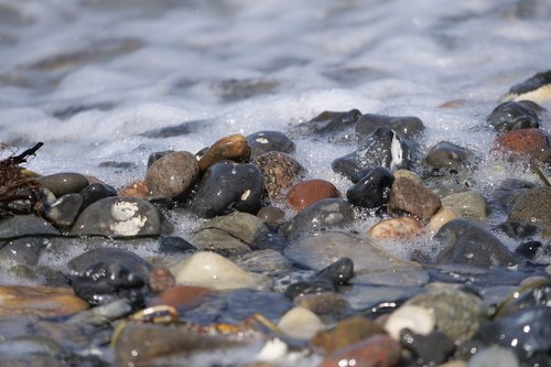 waters  baltic sea  pebble beach