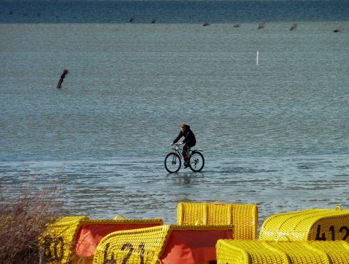 watts north sea cycle