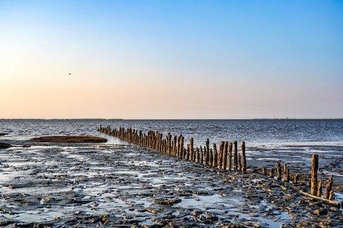 watts  wadden sea  sandbar