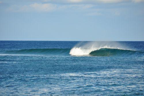 wave surf beach