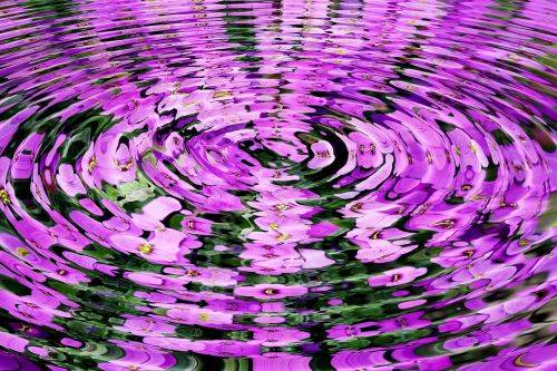 wave flowers water