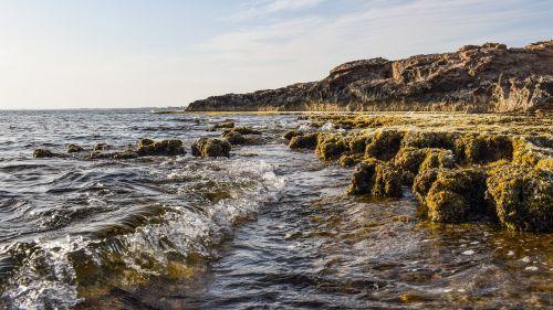 banga,uolos pakrantė,gamta,jūra,kraštovaizdis,pakrantė,pajūris,peizažas,pakrantės,ayia napa,Kipras