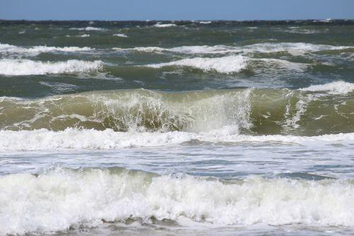 wave forward surf