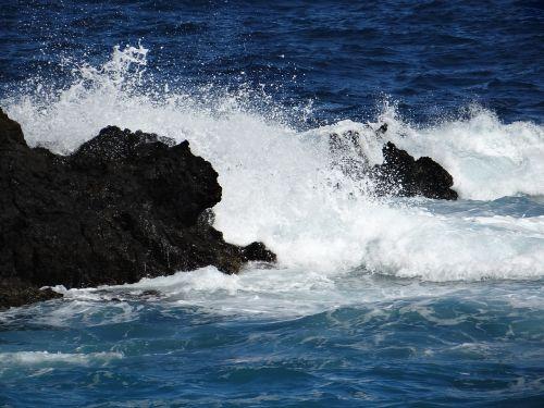 wave sea ocean