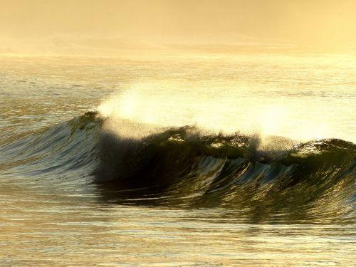 wave dawn ubatuba