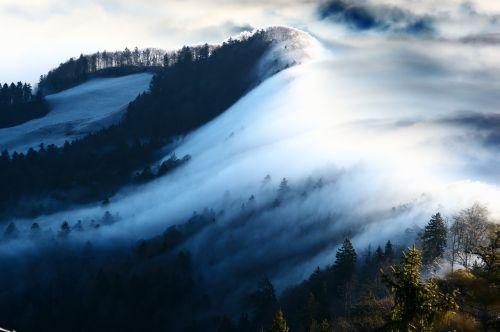 wave of fog fog nebellandschaft