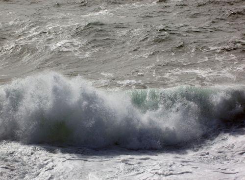 waves swell scum