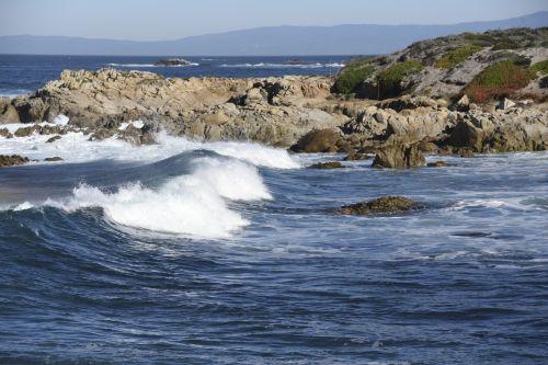Waves At Asilomar