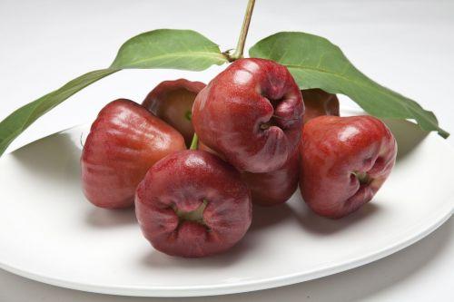 wax apple water generalife day peach