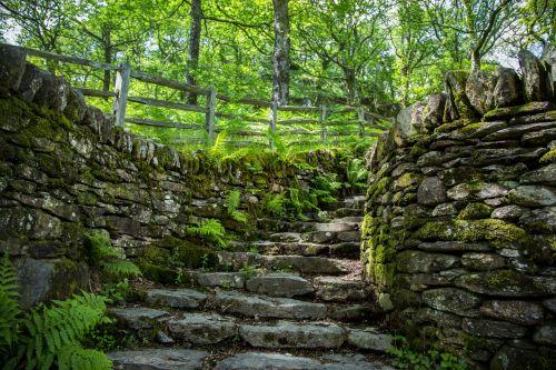 žalias, kelias, kelias, žingsniai, kraštovaizdis, miškas, sezonai, Velso, snieguotė, watkin, akmuo, akmenys, kelias