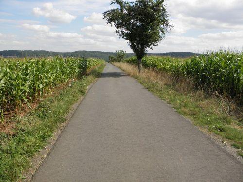 way go for a walk sky