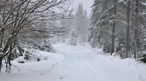 way landscape winter