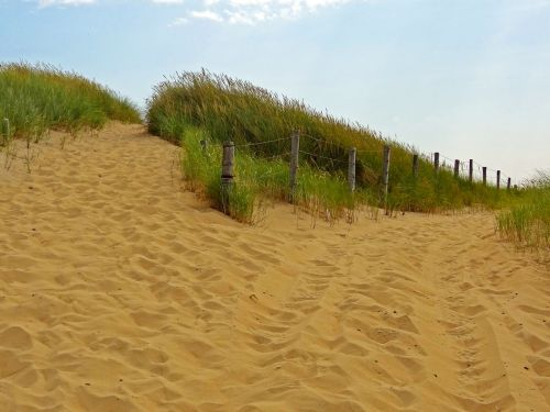 way,enjoy more canters,dunes,summer,nature reserve,beach,north sea,sea,landscape,holidays,sand dunes,sand beach,dune landscape,brecca