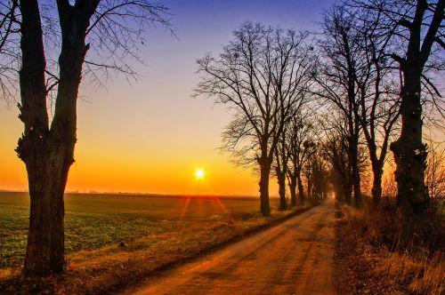 way sunset the rays