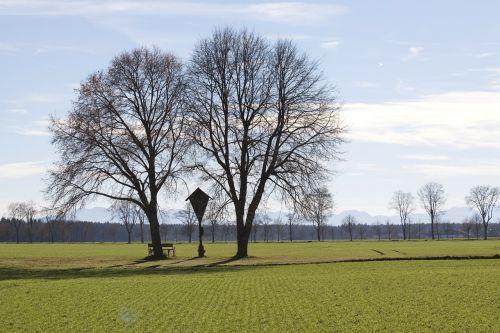 wayside cross spring trees