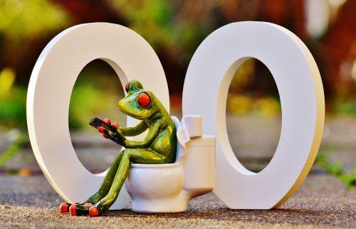 wc 00 toilet