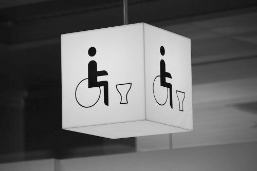 wc wheelchair users toilet
