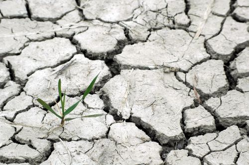 drought responsibility we